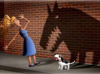 Phobia Dog